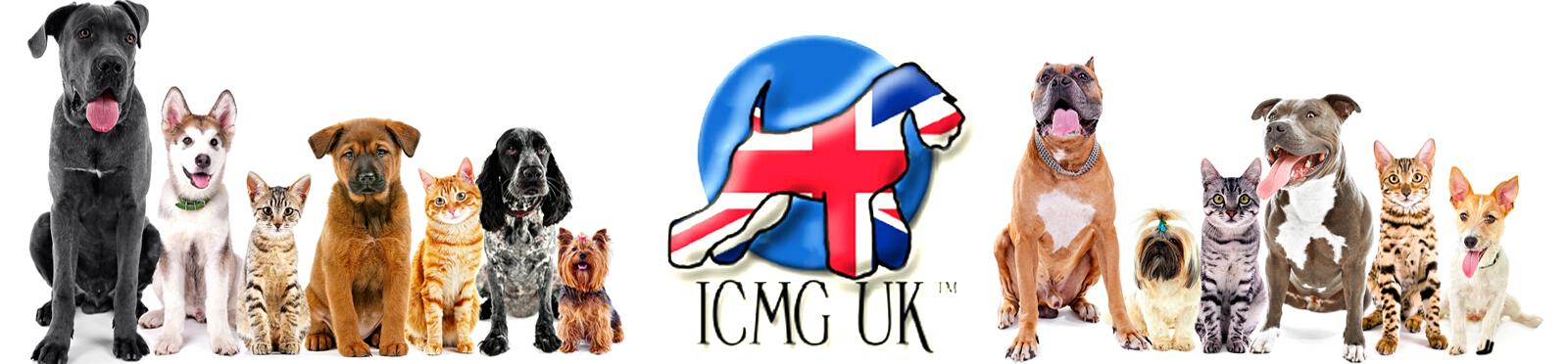 ICMG Education Ltd
